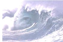 津波の特性 津波の高さ